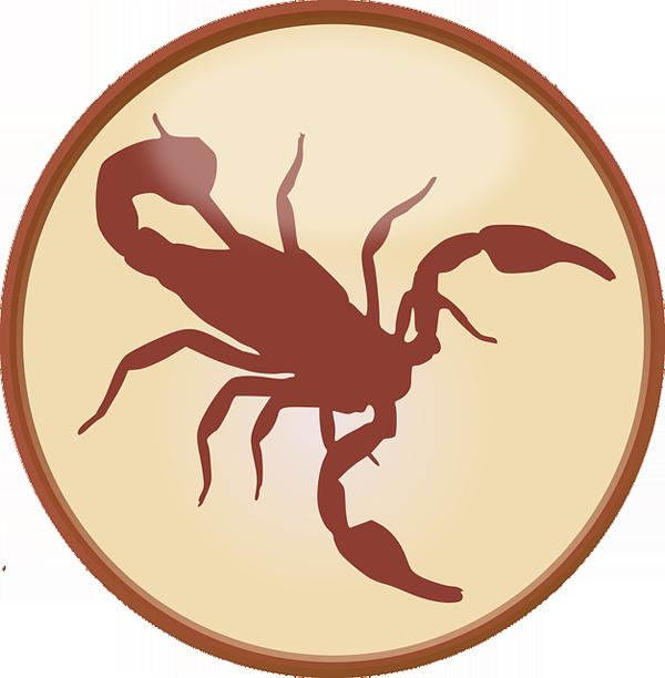 zodiaco06